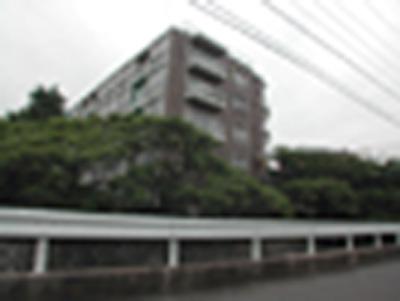 20100219_820341