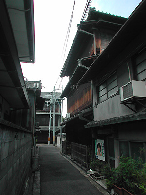 20100219_820384