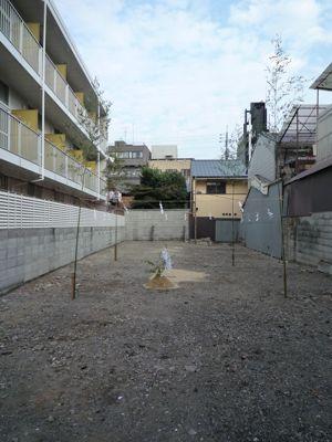 20101108_1459981